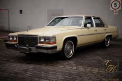 Cadillac Fleetwood Brougham - Refresh pak